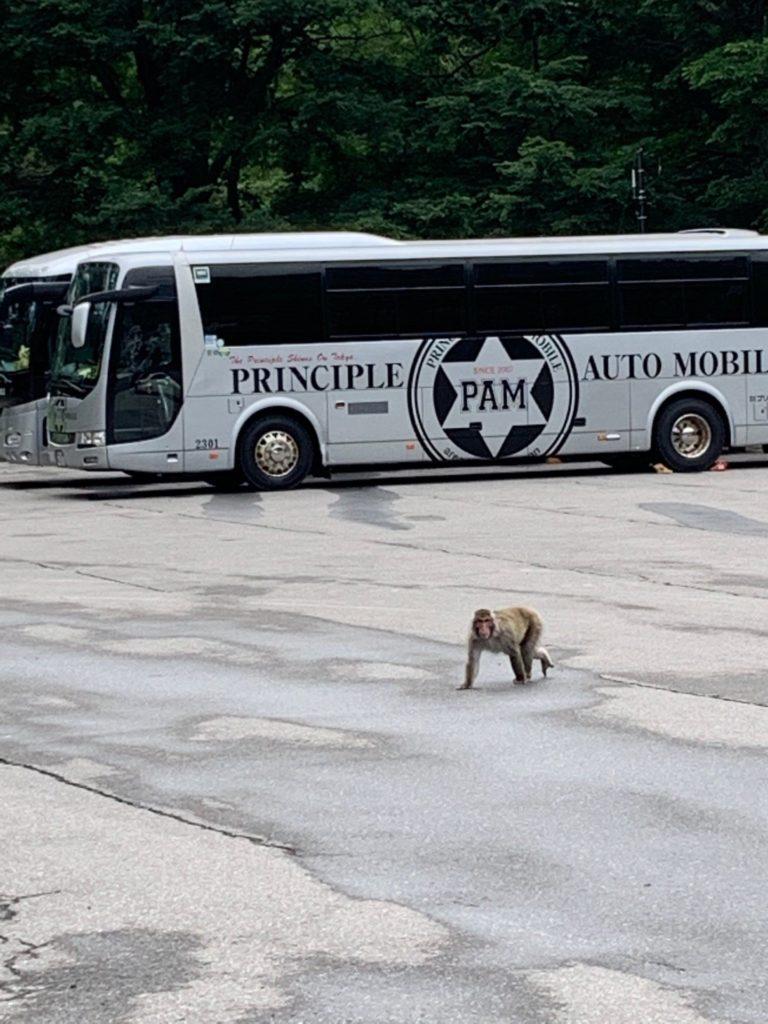 貸切バス日光
