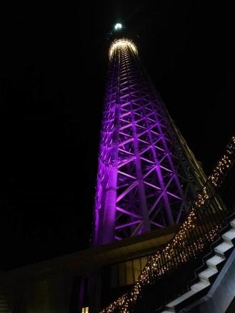 スカイツリー 紫