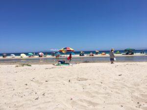 伊豆 砂浜 写真