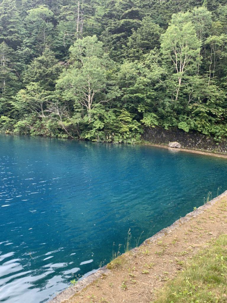 大沼池 写真