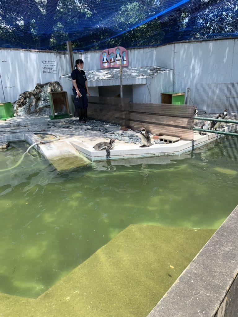 羽村市動物園 写真